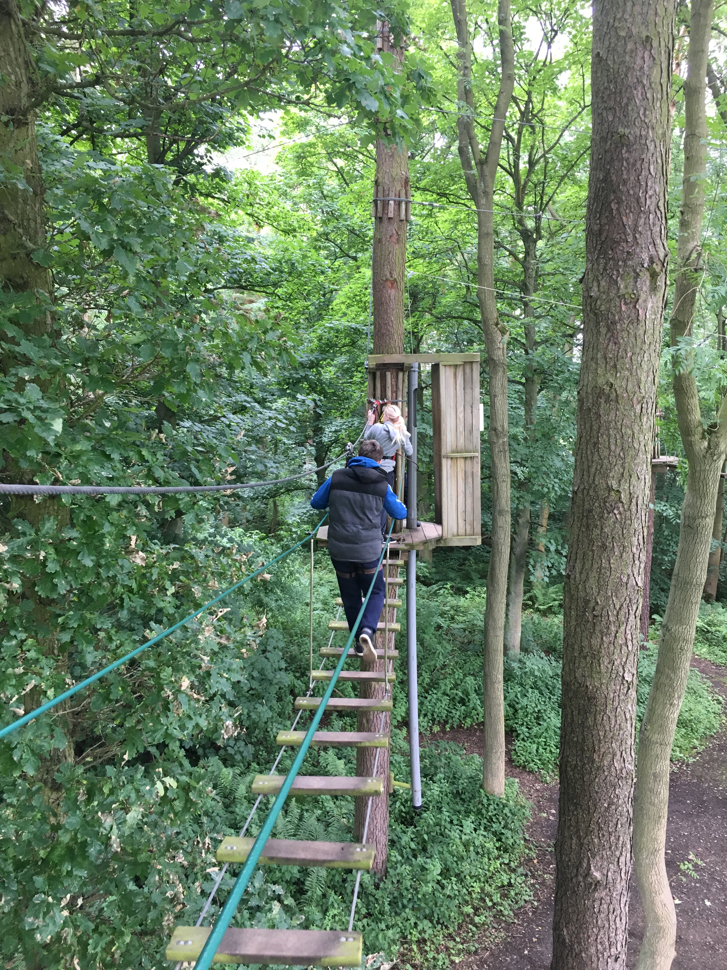 Go To Www Bing Comhella: North Yorkshire Young People Go Ape!