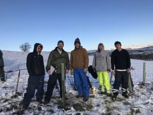 tree planting team photo
